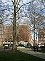 Horseferry Road from St John's Gardens, Westminster, London SW1 - geograph.org.uk - 739472.jpg