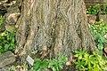 Hortus Haren d.j.b 05.jpg