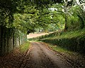 Huish Road - geograph.org.uk - 1014535.jpg