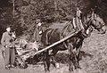 Hunting in Carinthia anno 1950.jpg