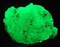 Hyalite opal fluorescing (Czech Republic) 3 (30540541973).jpg