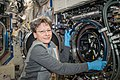 ISS-52 Peggy Whitson works on the Combustion Integrated Rack in the Destiny lab.jpg
