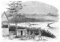 Illustrirte Zeitung (1843) 10 148 1 Der Hafen von Bombay.PNG