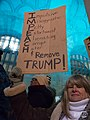 ImpeachTrumpEve-Pgh-3-59749 (49235950947).jpg