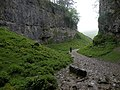 In Trow Gill - geograph.org.uk - 1565606.jpg