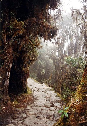 Inca Trail to Machu Picchu - Much of the trail is of original Incan construction