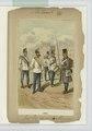 Inf. Reg. 2-e () Alexander. 1866 (NYPL b14896507-90447).tiff