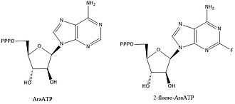 DnaG - NTP analogs that are known to inhibit DnaG as well as other polymerase enzymes