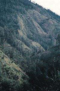 Intensively used hillside in Papua New Guinea.jpg