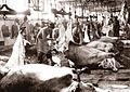 Iosif Berman - Aspect din Abatorul Comunal, hala de tăiere a vitelor mari, 1935.jpg