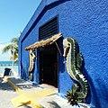 Isla Mujeres, Instituto nacional de pesca - panoramio.jpg