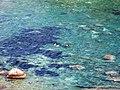 Isola Bella-Taormina-Messina-Sicilia-Italy-Castielli CC0 HQ - panoramio (3).jpg