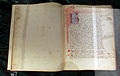 Italia centrale, lorenzo rusio, trattato di mascalcia, 1390 ca., pluteo 77.25, 01.JPG