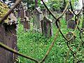 Jüdischer Friedhof Baisingen 2014-05-29 14-08-23 HDR.jpg