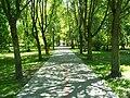 Janowiec park.jpg