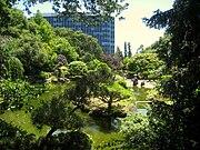 Japanese Tea Garden, San Mateo, CA - IMG 9126