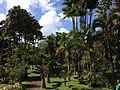 Jardin de Balata, Martinique.jpg