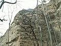 Jena - Hummelsberg 07.jpg