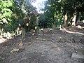 Jewish cemetery in Gdansk - panoramio - Sławek Zawadzki (20).jpg