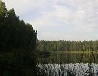 Jezioro Złotko 001.JPG