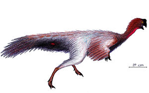 Jiangxisaurus - Jiangxisaurus