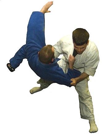 Gendai budō - Image: Judo 01No Back