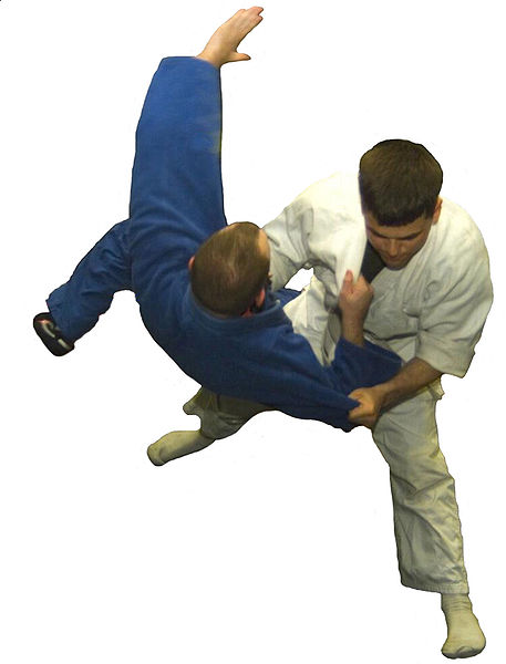 http://upload.wikimedia.org/wikipedia/commons/thumb/2/29/Judo01NoBack.jpg/457px-Judo01NoBack.jpg