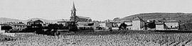 A general view of Juliénas, at the beginning of the 20th century