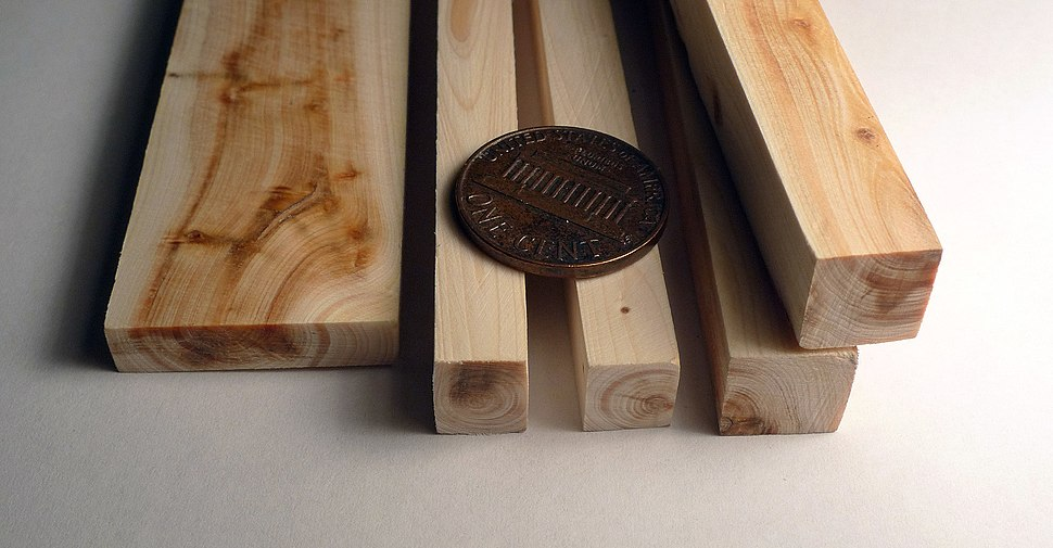 Juniper wood pieces and 1 cent coin