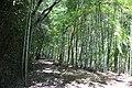 Kasugai 20210426-057.jpg