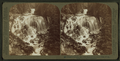 Keppler Cascade, one of the Gems of Yellowstone Park, U.S.A, by Underwood & Underwood 3.png