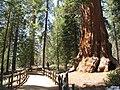 Kings Canyon NP - panoramio.jpg