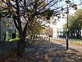 Kirkgate, Leith Nov 2011 (6322094041).jpg