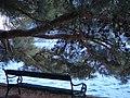 Klupica - panoramio (2).jpg