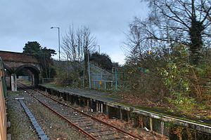 Knockmore railway station - The remains of the halt as seen from a passing steam special, December 2013.