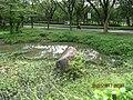 Kolam Tak Pernah Kering, dekat Taman Dayu, Pandaan - panoramio.jpg