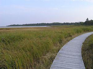 Kouchibouguac National Park - Boardwalk over a salt marsh