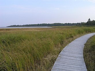 Kouchibouguac National Park - Boardwalk over a salt marsh