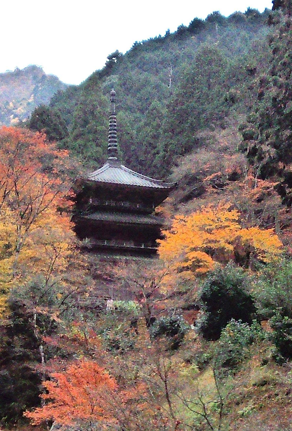 高源寺 (丹波市) - Wikipedia