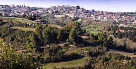 Panoramic view of Kryoneri