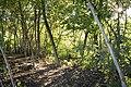 Kurcaparti tanösvény Mindszent - panoramio (52).jpg