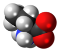 L-Butyrine-zwitterion-3D-spacefill.png