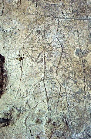 Ancient Maya graffiti - Image: La Blanca graffiti 4