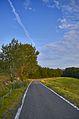 La strada per Berzano - panoramio.jpg