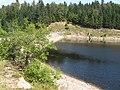 Lac de la Lande avec le barrage dans les arbres.jpg