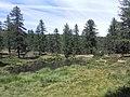 Lago della capra e fontana 02.jpg
