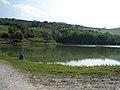 Lago la Fenice - Appignano del Tronto - panoramio.jpg