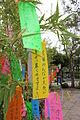 Laika ac Tanabata Wishes (7472067930).jpg