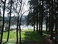 Lake Grove Swim Park.jpg