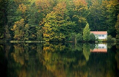 Lake Halen Blekinge.jpg